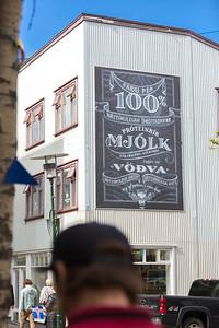Iceland_20140501_Reykjavik-27