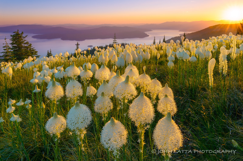 Beargrass and Lake Pend Oreille