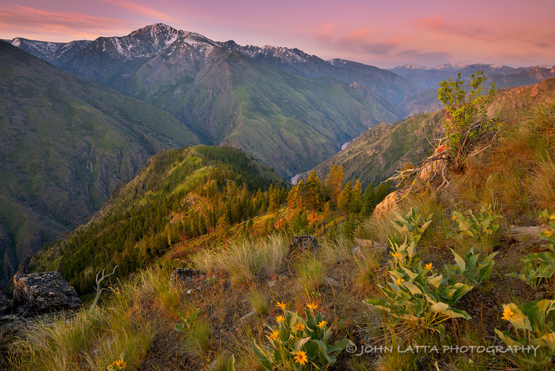 Above the Middle Fork of the Salmon River