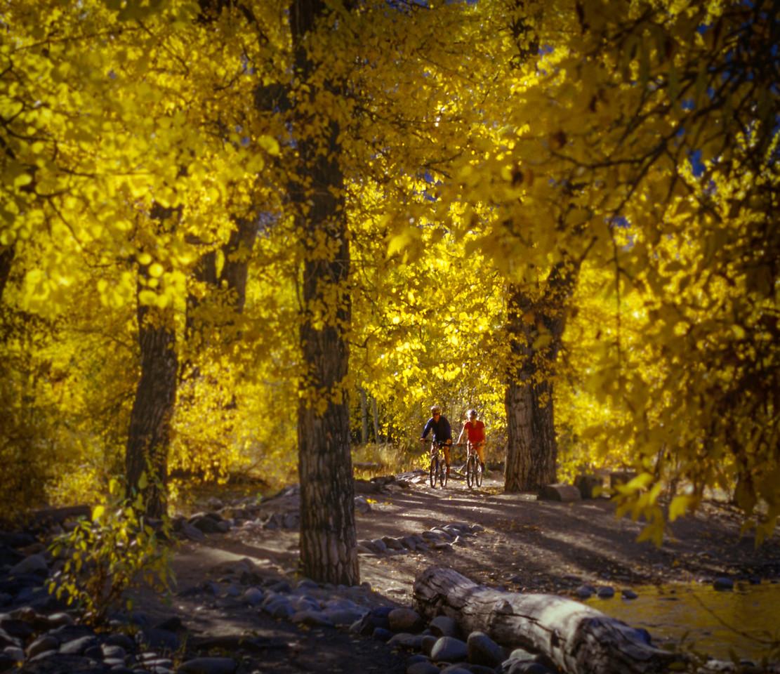 Fall Riding Lake Creek, Ketchum