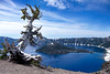 Crater Lake in July