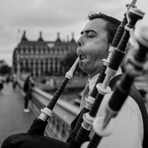 MUSICIAN, London, GREAT BRITAIN