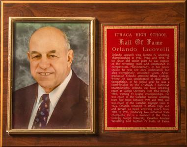 Orlando Iacovelli