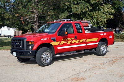 SYCAMORE  BRUSH 1  2008 FORD F350 - ALEXIS  175-250   #SK-726