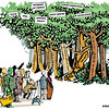 Internet governance forest