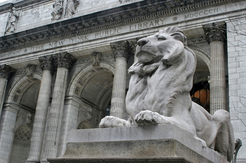 New York City Library - w3