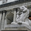 New York City Library - w3