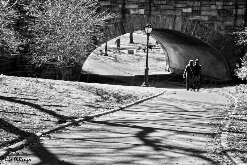 A Stroll in Central Park      0708