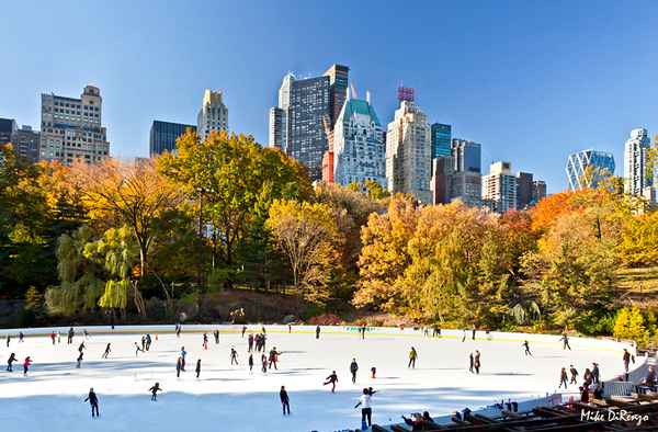 Wolman Rink in Central Park   9638