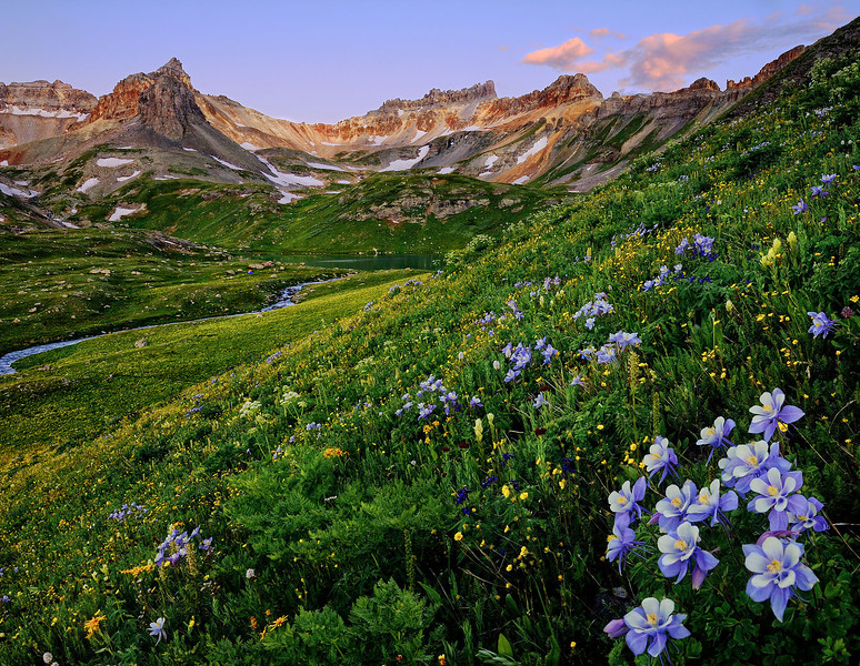 """ELEVATED BEAUTY"" (San Juan Mountains, CO)"