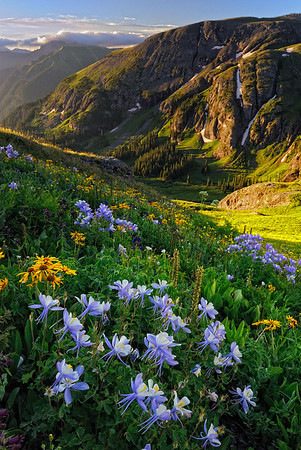 """COLUMBINE LIGHT"" (San Juan Mountains, CO)"