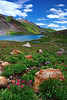 "'ALPINE COLORS"" (Ice Lake Basin, CO)"