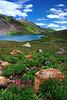 "'ALPINE COLORS"" (Ice Lake Basin, CO)"