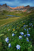 """COLUMBINE SUNRISE"" (Upper Ice Lake Basin, CO)"