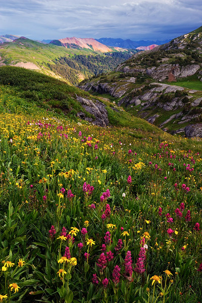 """SUMMER'S GLORY"" (San Juan Mountains, CO)"