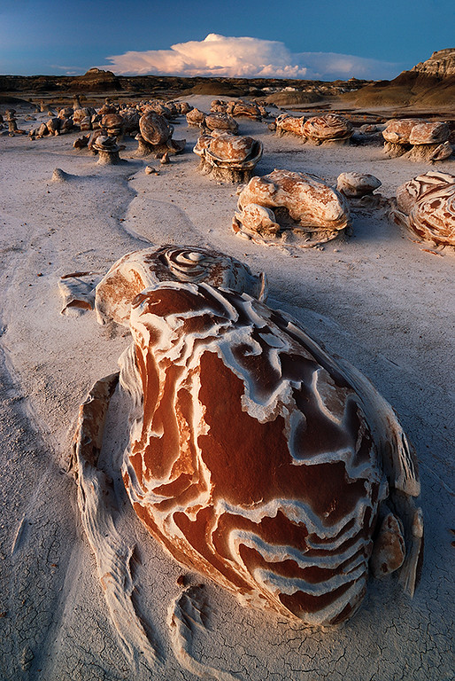 """DESERT PSYCHEDELIA"" (Bisti Wilderness, NM)"