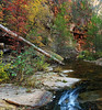 """OAK CREEK FALL"""