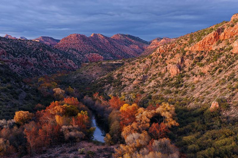 """AUTUMN'S GIFT"" (Sycamore Canyon Wilderness, AZ)"
