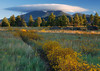 """CLOSE ENCOUNTER"" (Flagstaff, AZ) - I saw this lenticular cloud hovering over the San Francisco Peaks from my bedroom window while drinking my morning coffee. I walked across the street in my PJ's, took this picture and came back to finish my coffee."