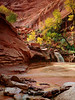 """COYOTE GULCH FALLS"" (Grand Staircase, UT)"