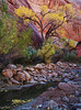 """CANYON WATERCOLOR"" (Grand Staircase, UT)"
