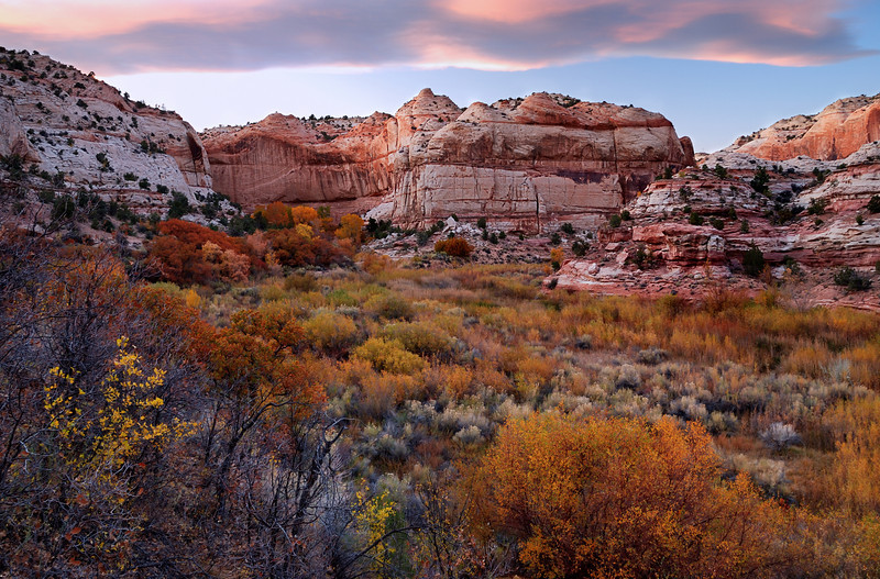 """AUTUMN GLOW""  (Grand Staircase, UT) - Fall Colors in Calf Creek Canyon."
