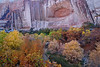 """CALF CREEK AUTUMN"" (Grand Staircase, UT)"