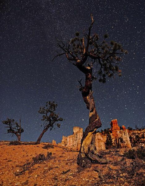 "*THREE WISEMEN"" (Bryce Canyon NP, UT)"