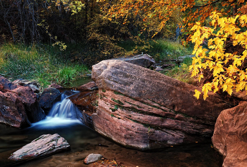 """SIMPLICITY"" (Zion NP, Utah) - Autumn in the left fork of North Creek; this creek is inside the Great West Canyon and eventually leads to The Subway."