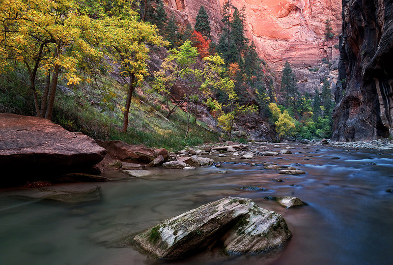 """FALL IN THE NARROWS"" (Zion Nat'l Park)"