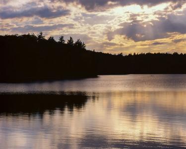 Sunset At Walden Pond II