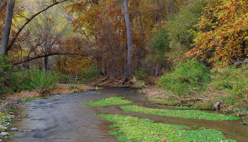 """AUTUMN CREEK"""