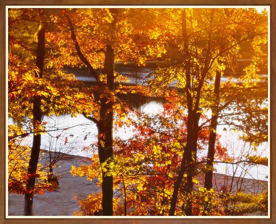 Walden Pond at Sunset