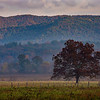 NEW  DAY  at  CADES  COVE