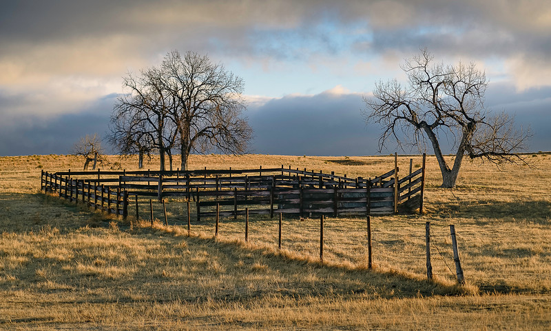 CATCH CORRAL:  SPRING MORNING