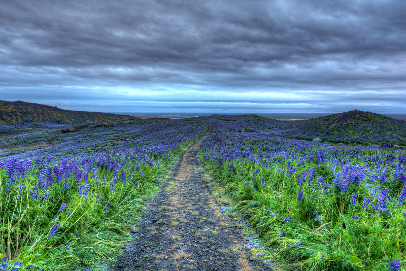 Mountain Path, South Iceland