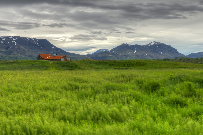Windy Meadow, South Iceland