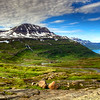 Road To Seyoisfjorour, East Fjords Iceland
