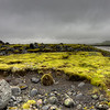 Rocks In Moss Field, South Iceland