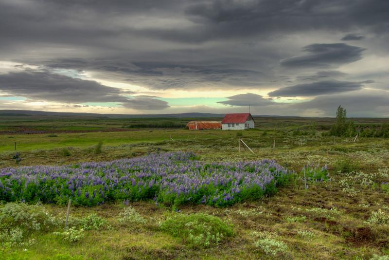 Farm, South Iceland