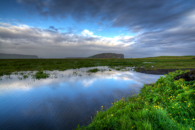 Marsh In Vik
