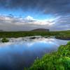 Marsh In Vik