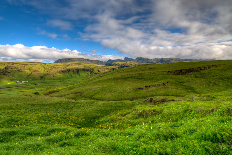 Grassy Meadow, South Iceland