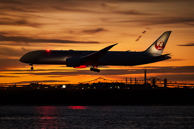 Japan JL8 for Tokyo arriving in Boston. Boeing Dreamliner 787-900. Reg JA864J