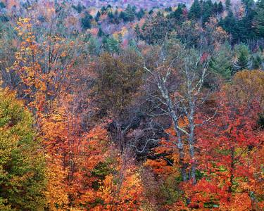 Bear Mountain Overlook