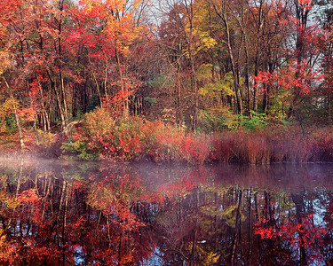 Colorful Trees, Sudbury River