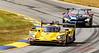 2019 Petit Le Mans ©CoburnPix-24