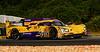 2019 Petit Le Mans ©CoburnPix-75