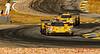 2019 Petit Le Mans ©CoburnPix-65