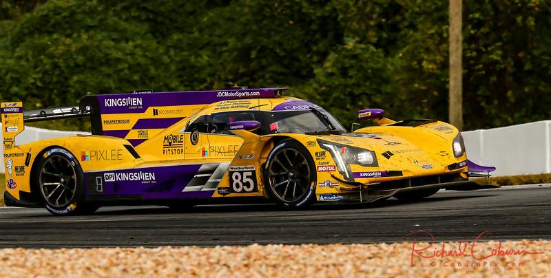 2019 Petit Le Mans ©CoburnPix-69